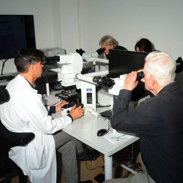 Ein Arzt und mehrere ältere Personen schauen durch verschiedene Mikroskope