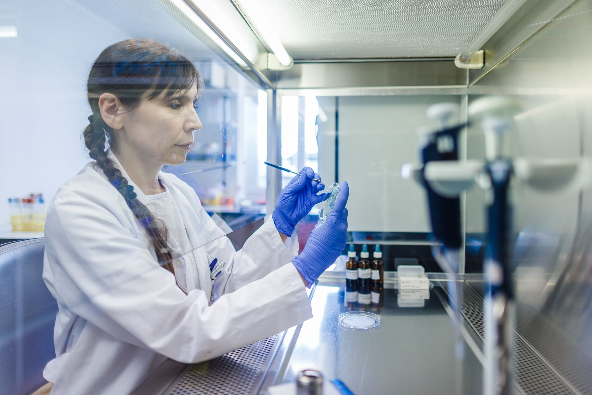Eine Forscherin untersucht eine Probe unter einer Abzugshaube