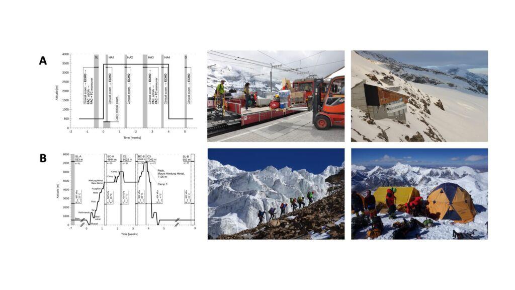 Diagramme und Bilder von Wanderungen zur Forschung