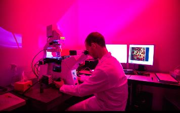 Mann schaut durch Mikroskop
