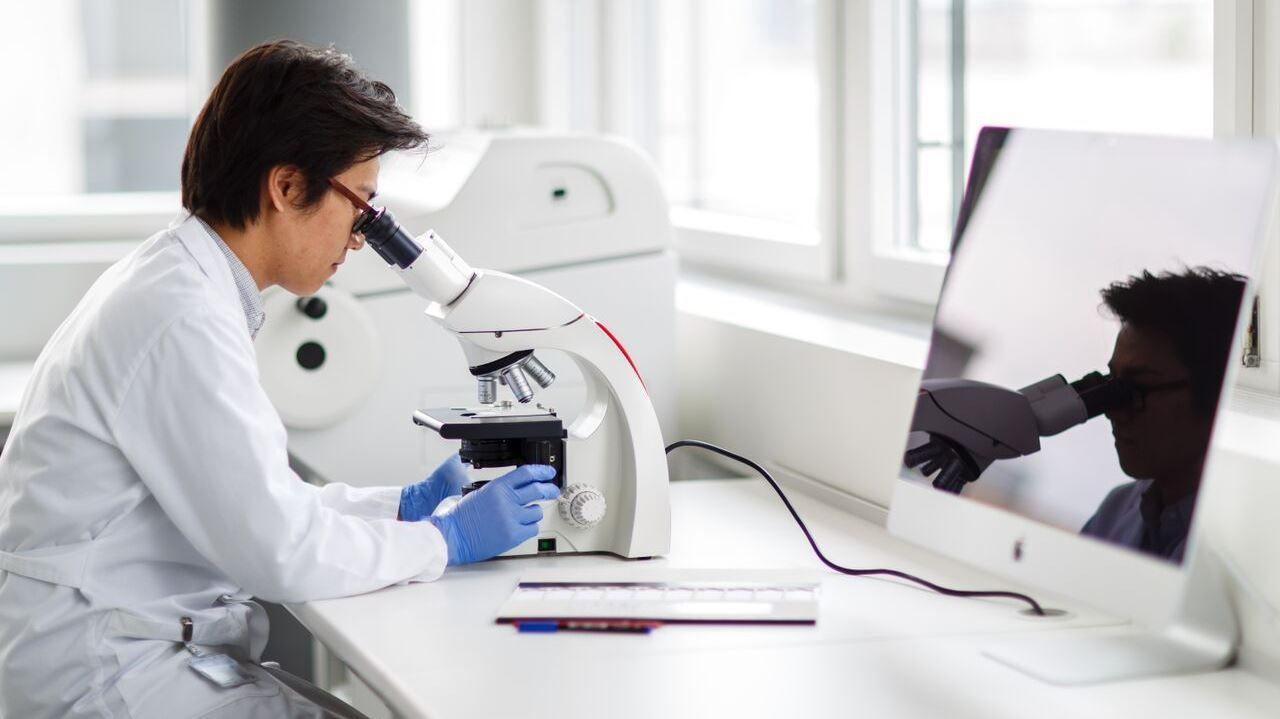 Fachperson am Mikroskop