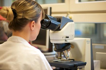 Mitarbeiterin Hämatologie am Mikroskop