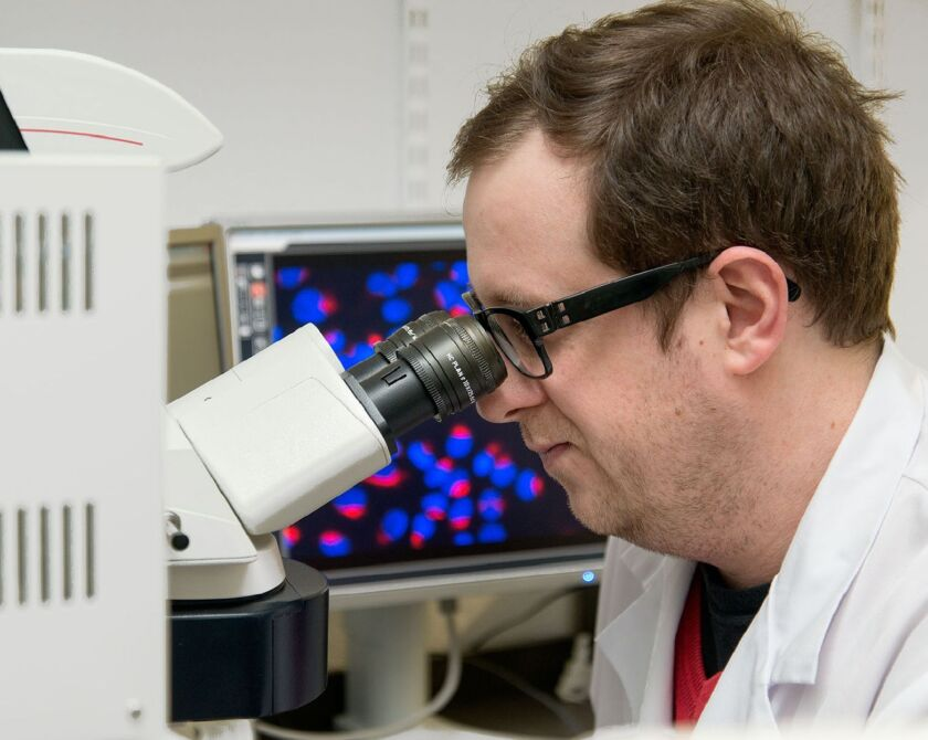 Arzt forscht am Mikroskop