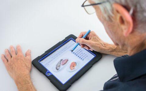 Studienteilnehmer arbeitet am Tablet