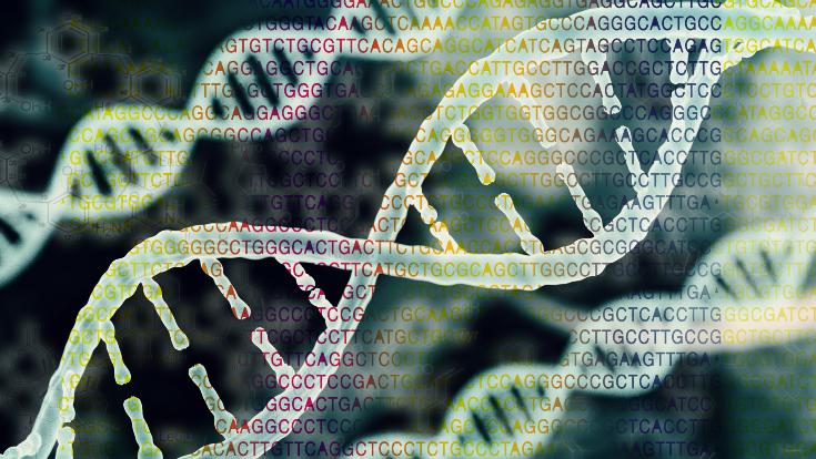 Abbildung einer DNA Sequenz